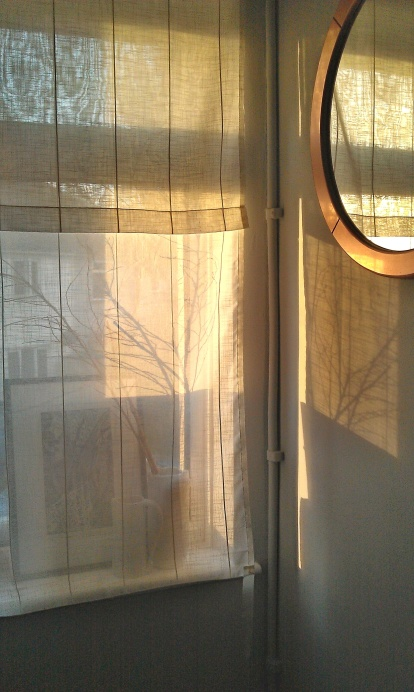 Light moves around to this window in the evening