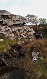 Stream on Dun Caan descent path