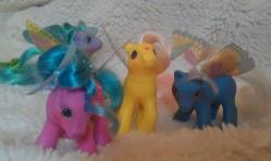 Summerwing Ponies